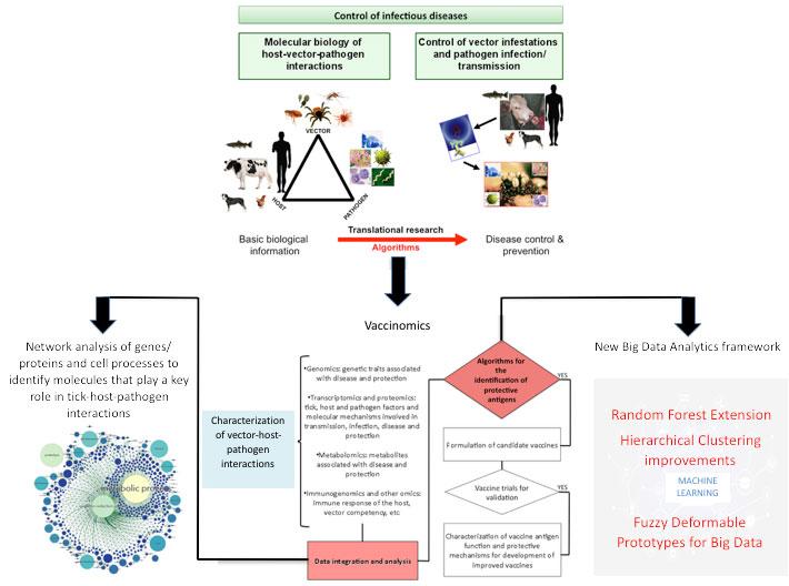 Detección y caracterización a gran escala de antígenos protectores para vacunas contra garrapatas y patógenos mediante la combinación de la vacunómica con técnicas analíticas inteligentes de Big Data.