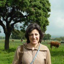 Isabel Gsrcia Fernandez de Mera IREC