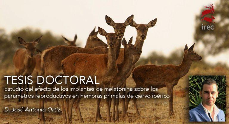 """DEFENSA DE TESIS DOCTORAL: """"Estudio del efecto de los implantes de melatonina sobre los parámetros reproductivos en hembras primalas de ciervo ibérico"""""""