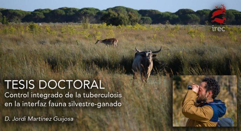"""DEFENSA DE TESIS DOCTORAL: """"Control integrado de la tuberculosis en la interfaz fauna silvestre-ganado"""""""